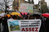 Pasteur contre pesticides